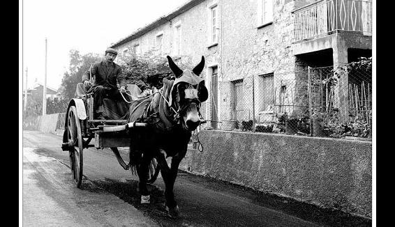 Canzuna di Carritteri: l'antico canto siciliano del viaggiatore solitario